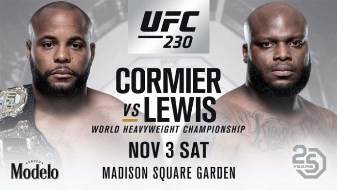 Rozpis zápasů na UFC 230
