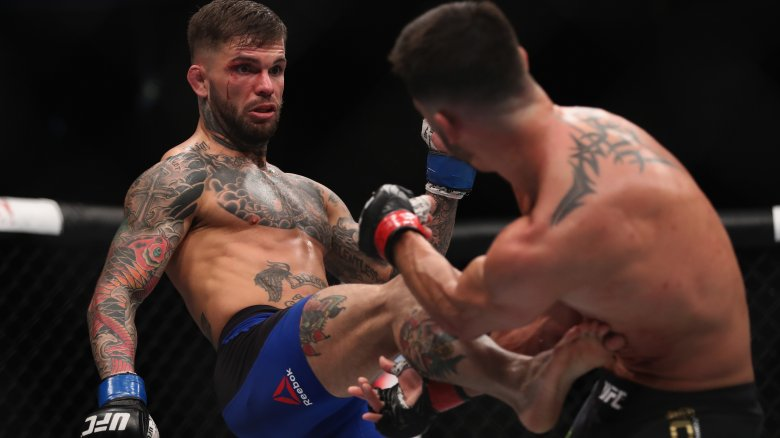 MMA je zkratka anglického Mixed Martial Art