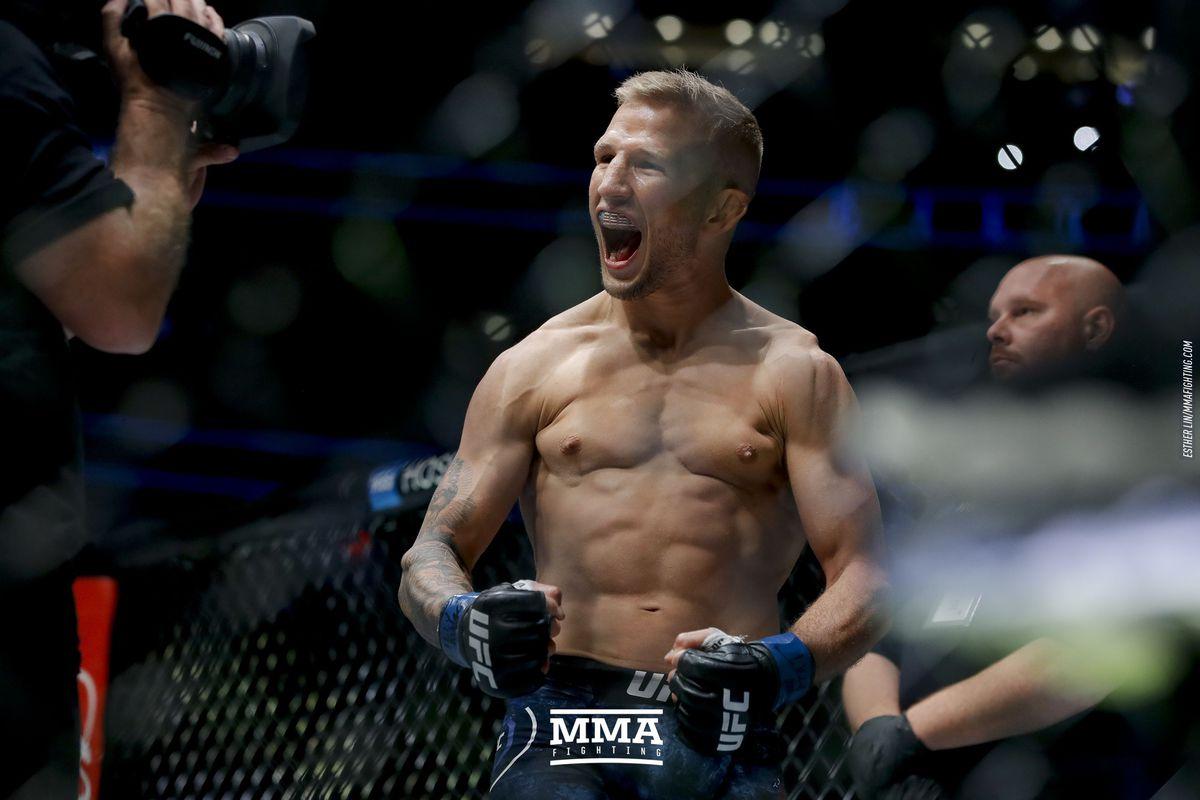 TJ Dillashaw září v UFC